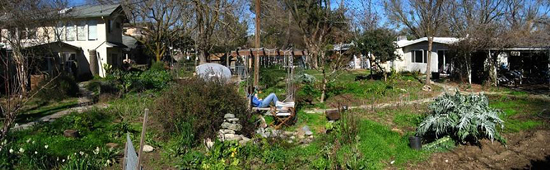 NStreet Cohousing backyard (550)