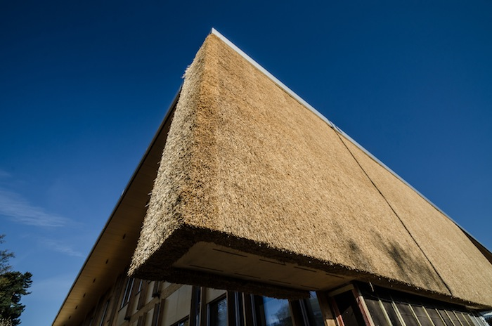 Is A Thatched Roof Appropriate For A New Build Home