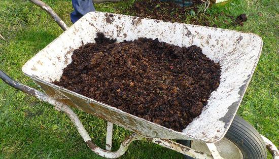 human-compost