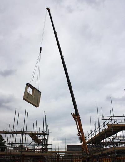 Lilac-crane-lifting-panel