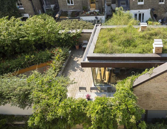 green-roof-at-the-muse